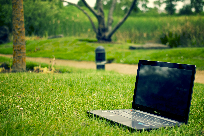 Laptop on grassy field