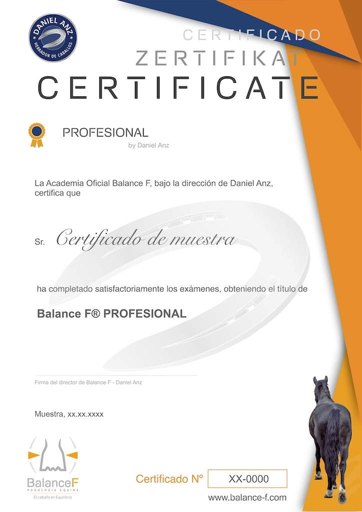 Certificado Balance F Profesional