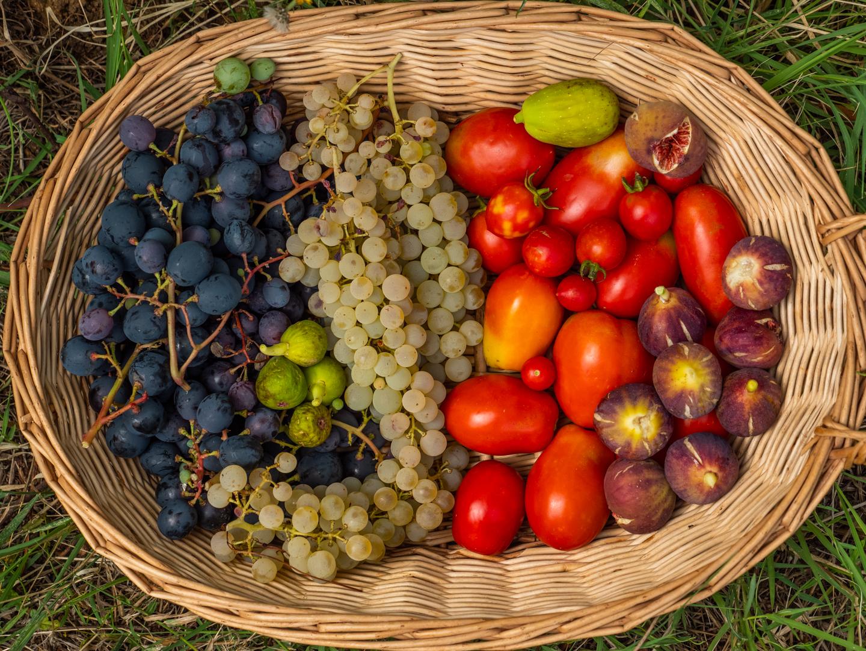 frutti del Bosco di Ogigia
