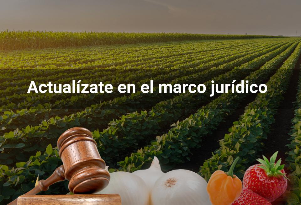 Marco Legal de los Agronegocios