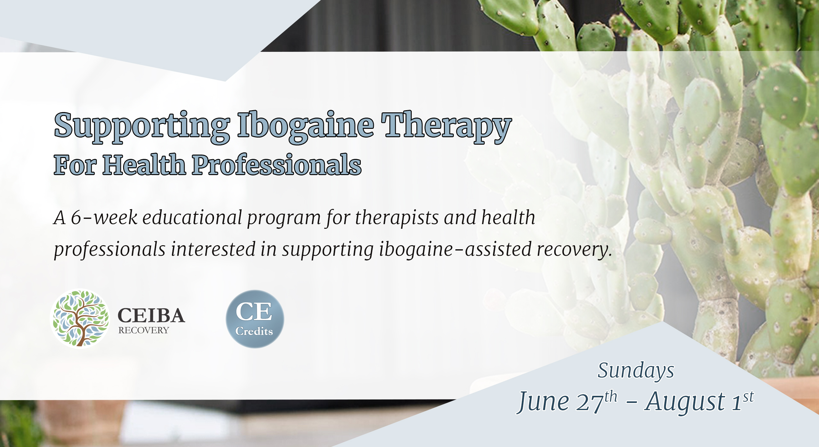 Supporting Ibogaine Therapy for Health Professionals