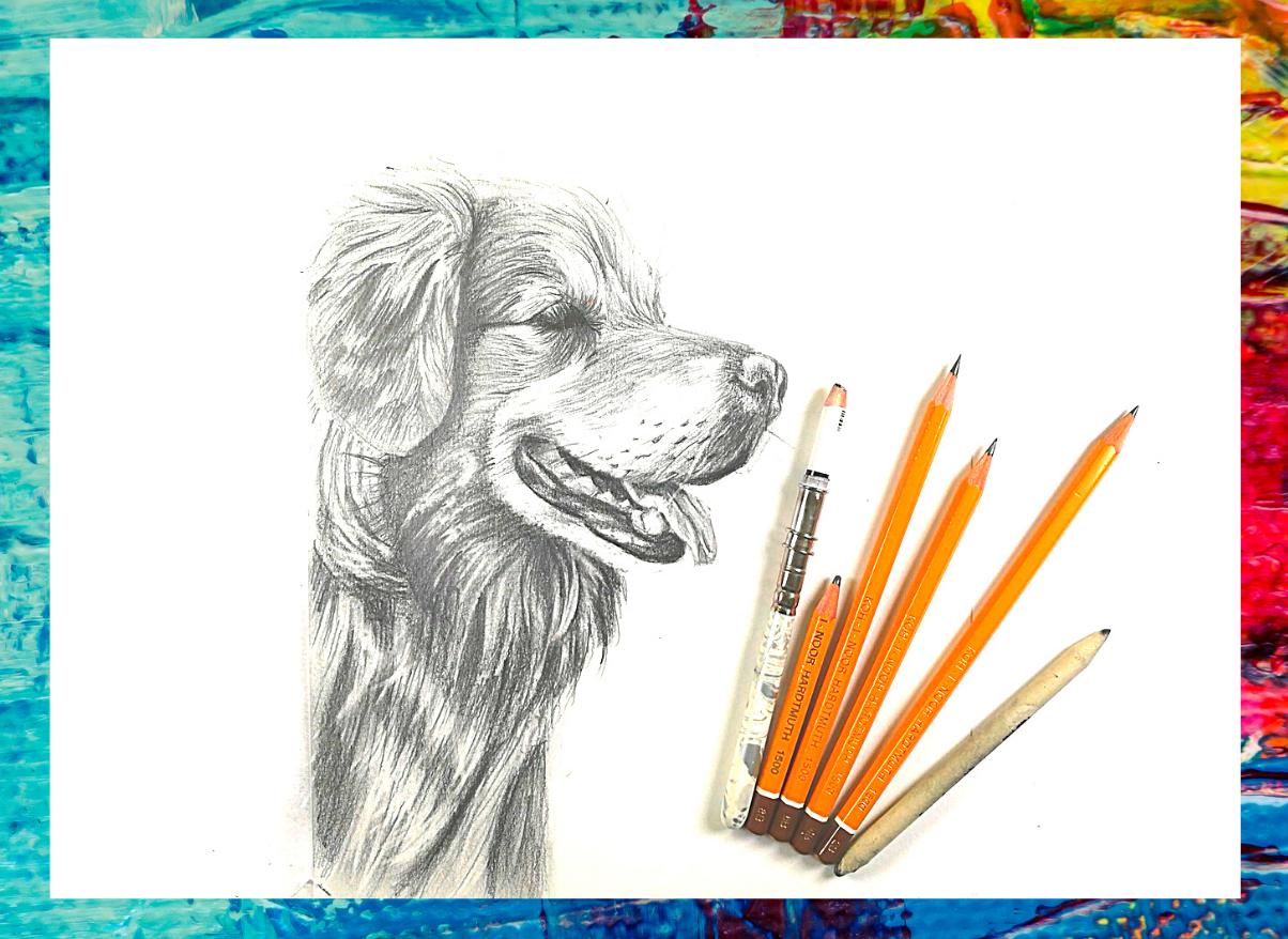jak nakreslit psa