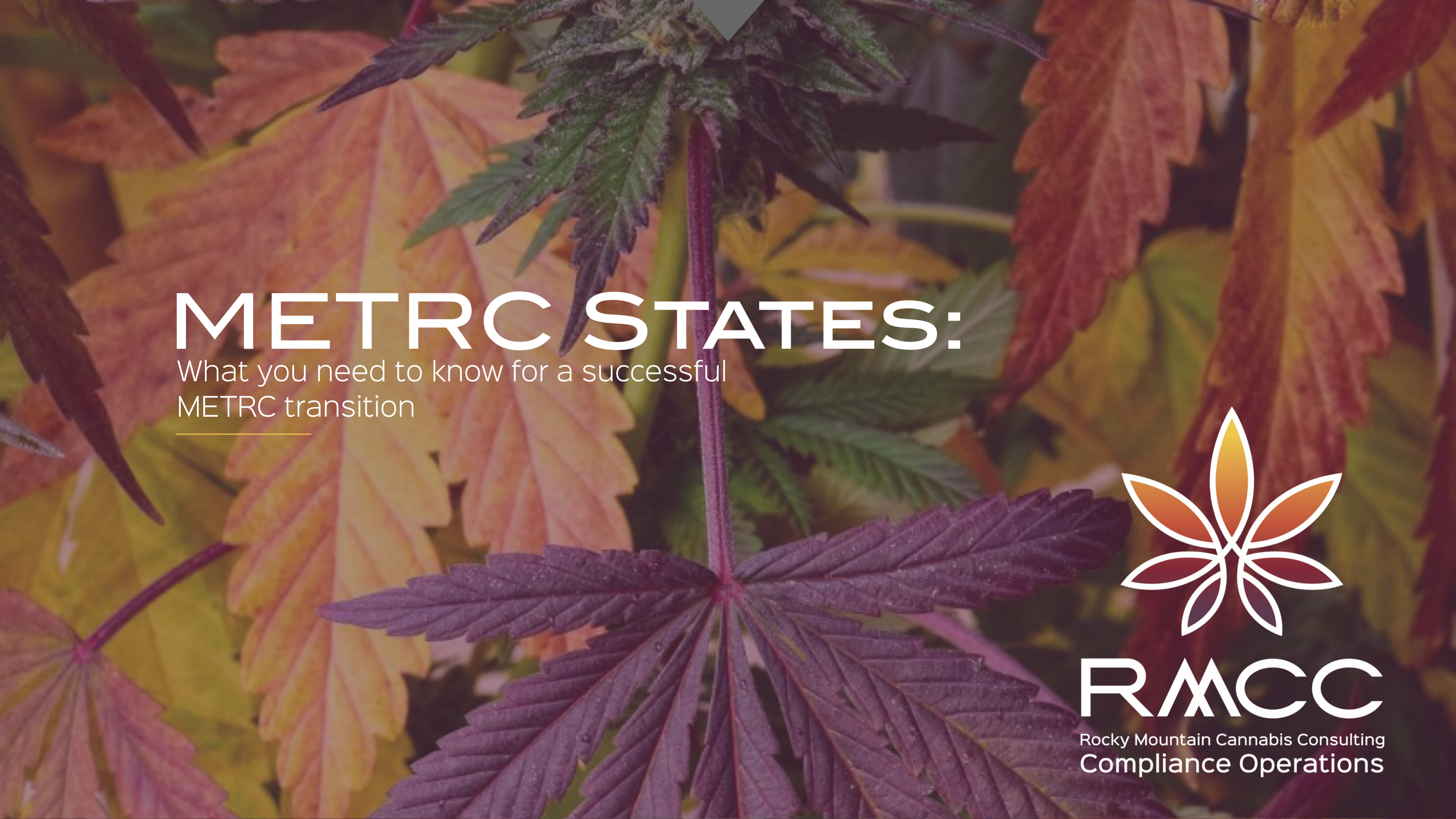 METRC STATES WHAT YOU NEED TO KNOW FOR A SUCCESSFUL METRC