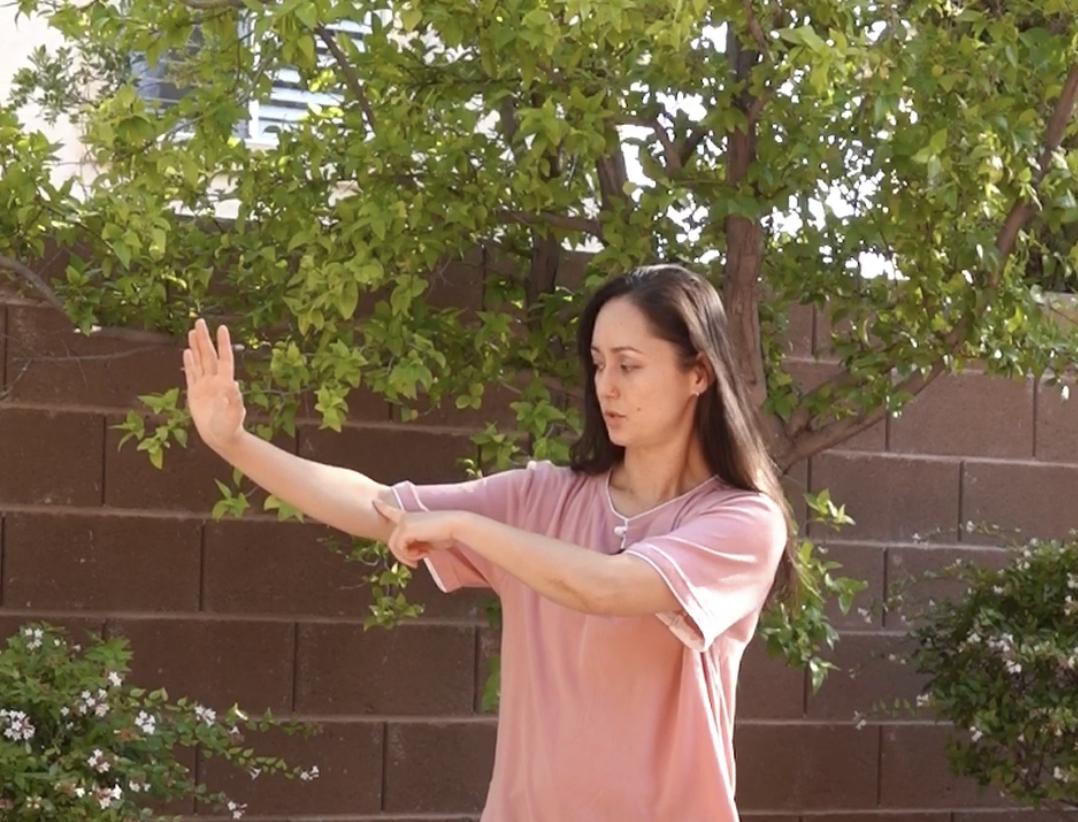 Alicia McGrann Tai Chi Coach