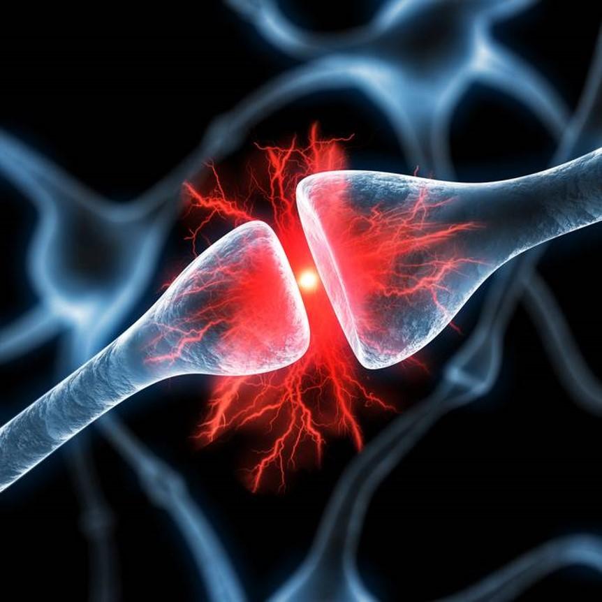 Neuroleading Lab Veränderung und Neuroleadership