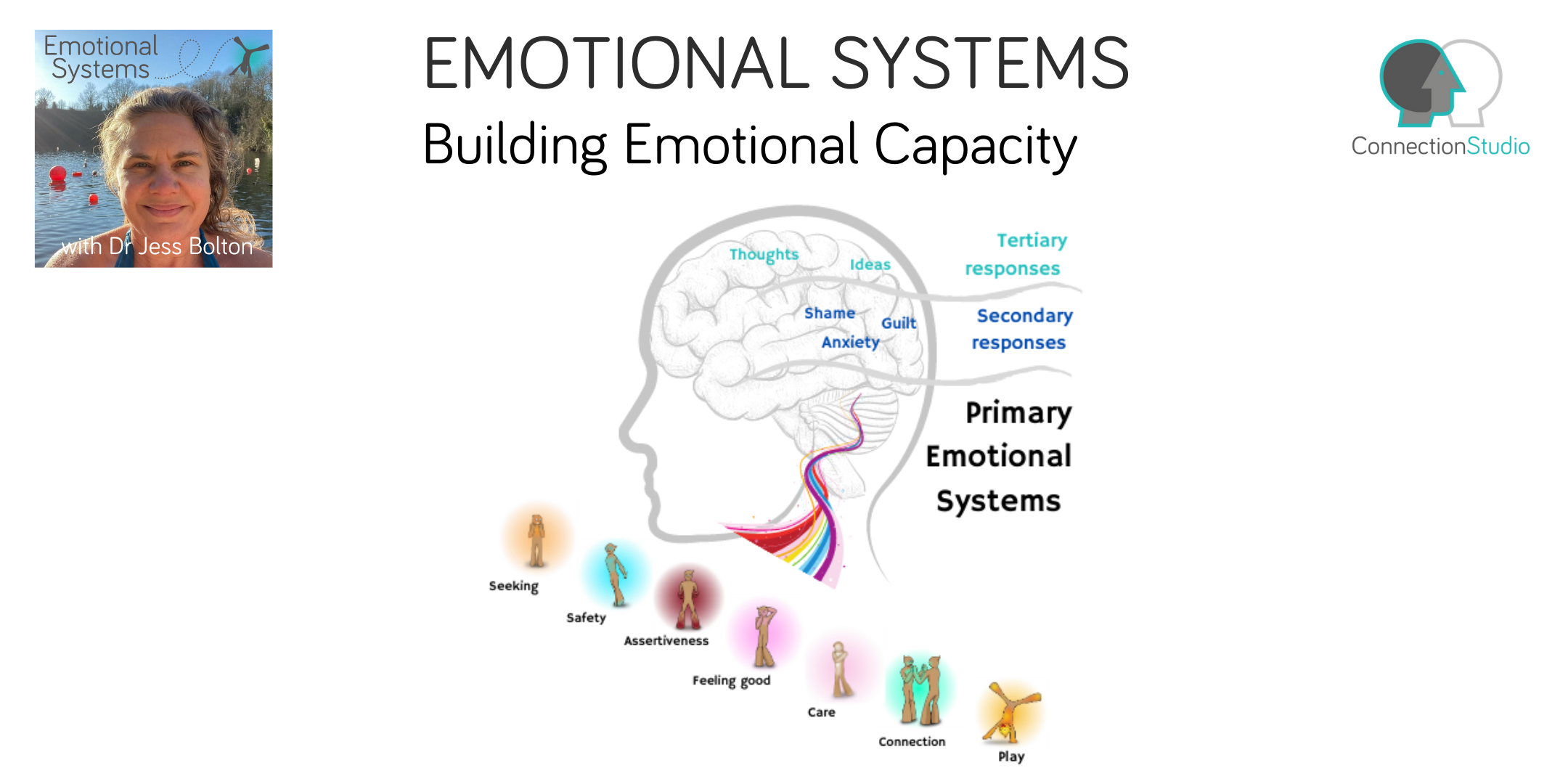 title - Emotional Systems: Building emotional capacity
