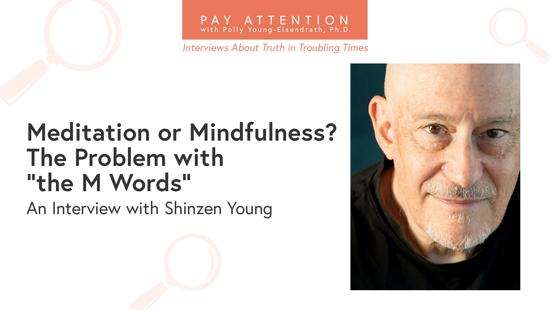 Shinzen Young Pay Attention Interviews