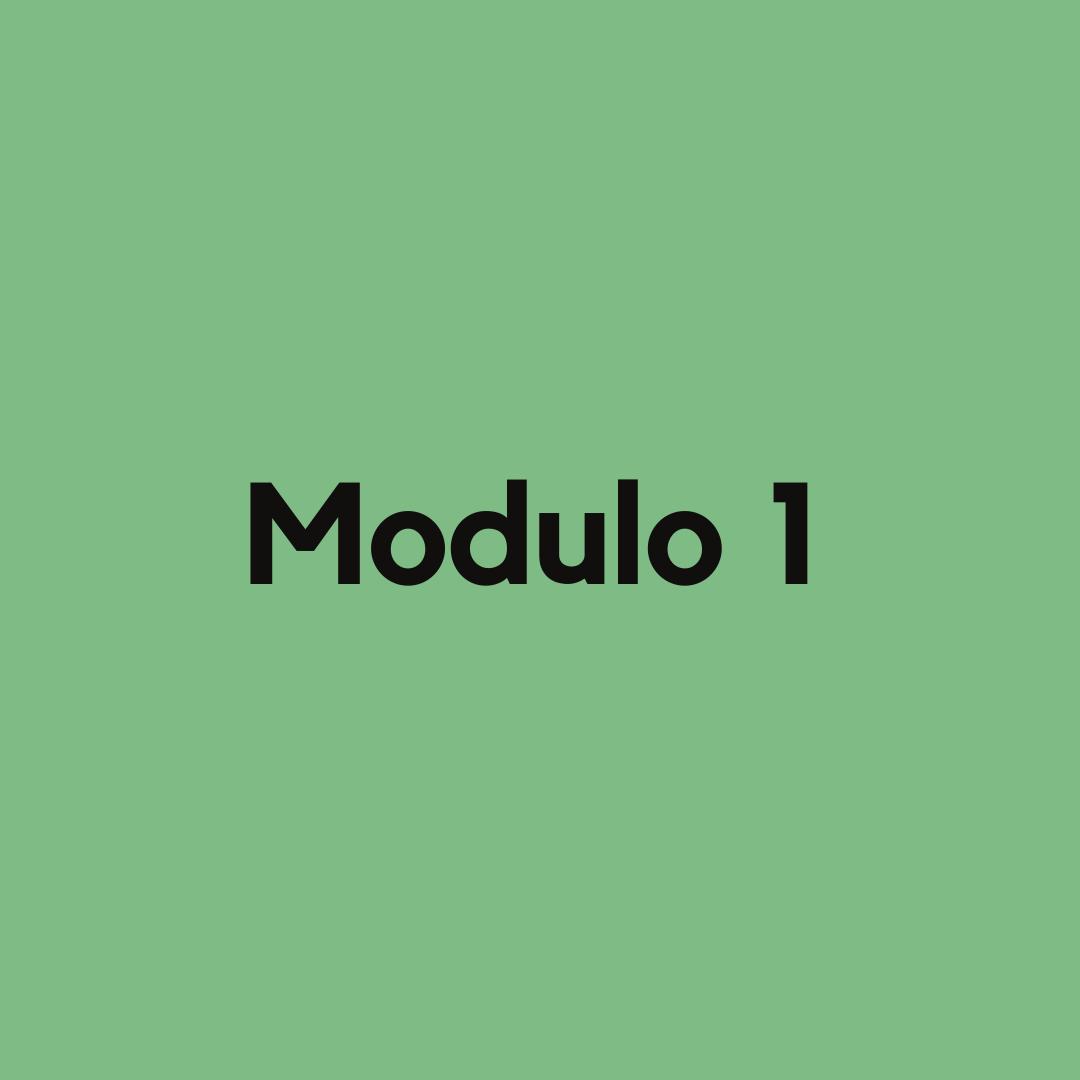 modulo 1 corso influencer