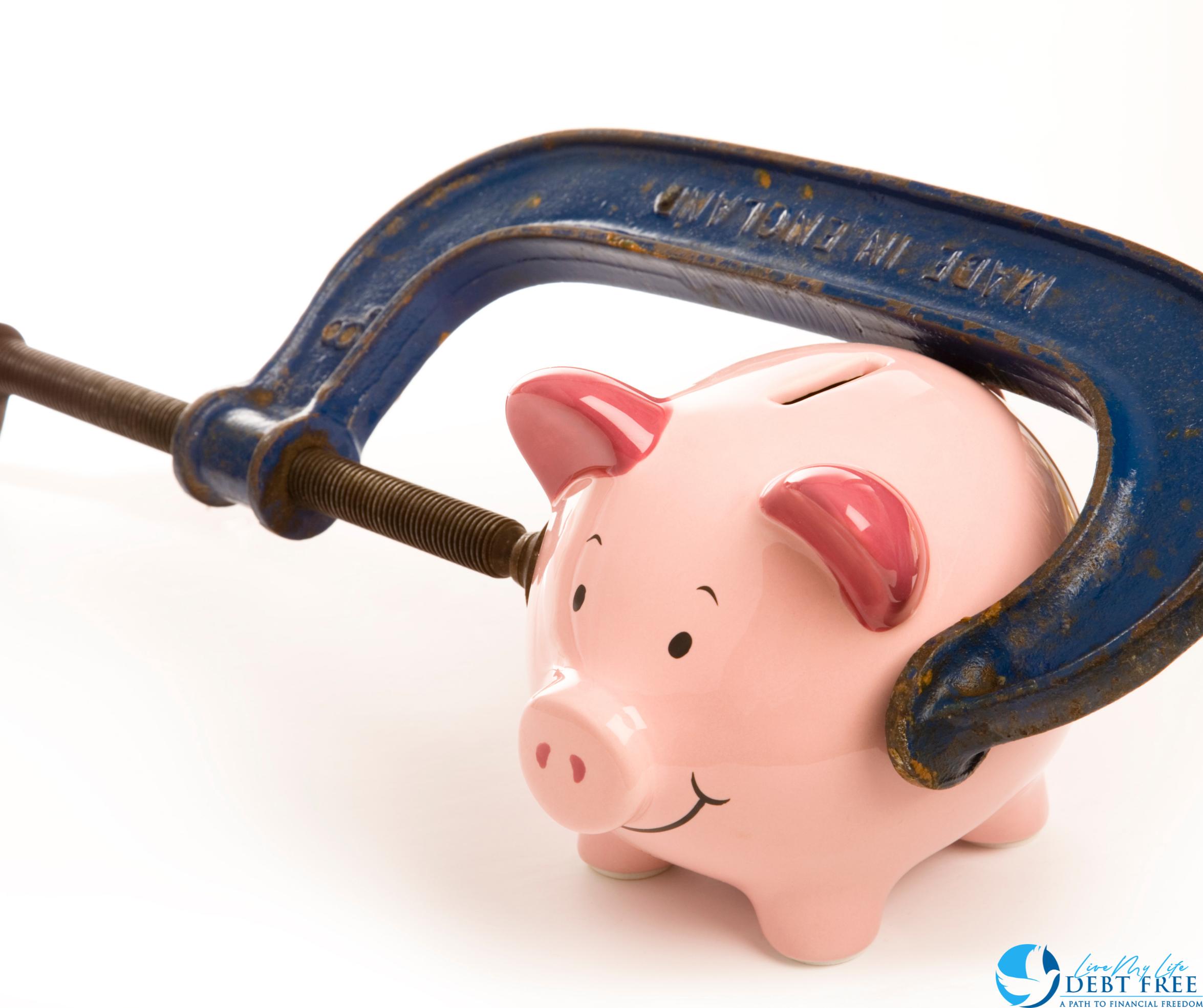 Piggy bank in a grip