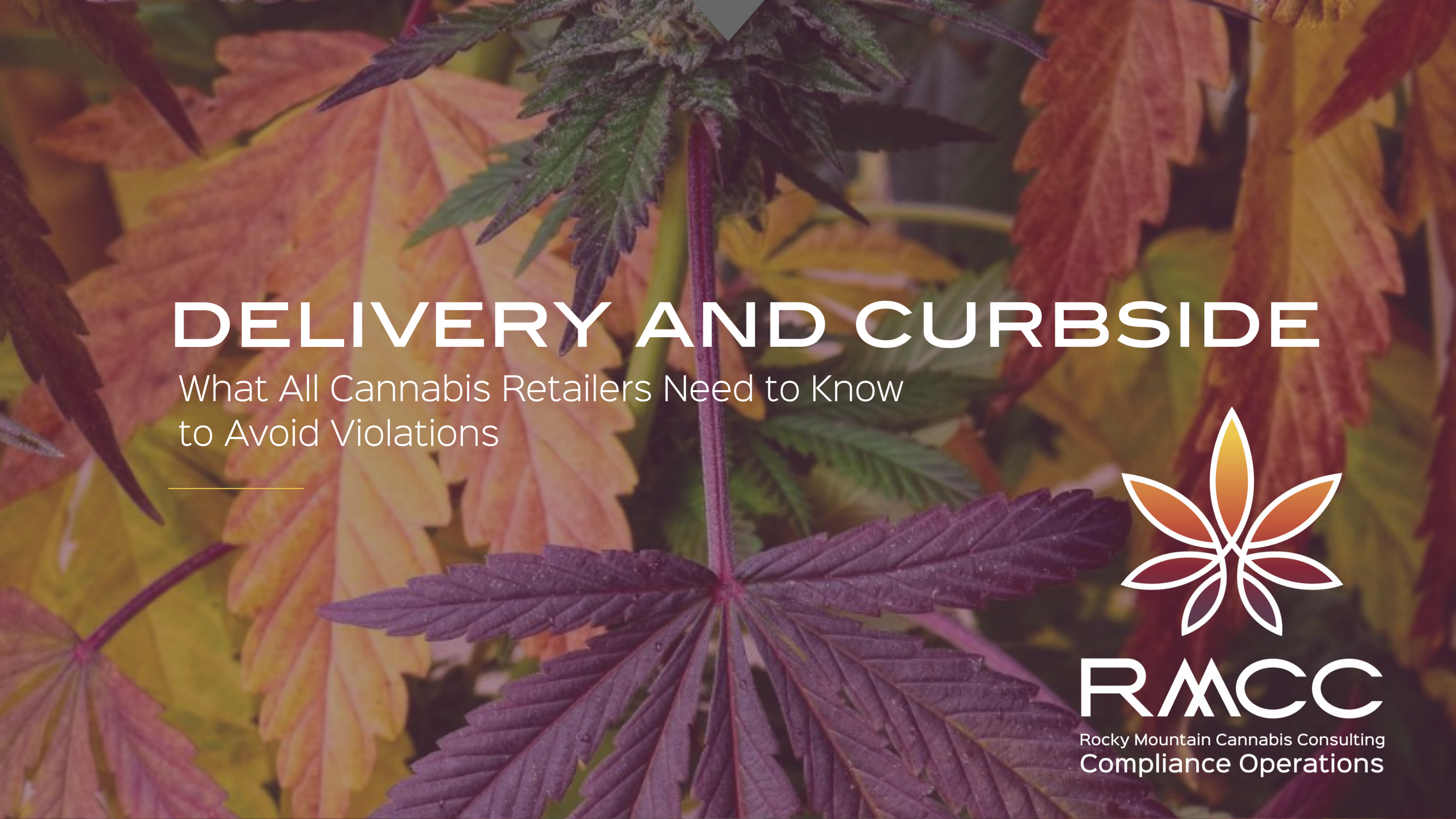 DELIVER AND CURBSIDE WHAT ALL CANNABIS RETAILERS NEED TO KNOW TO AVOID VIOLATIONS