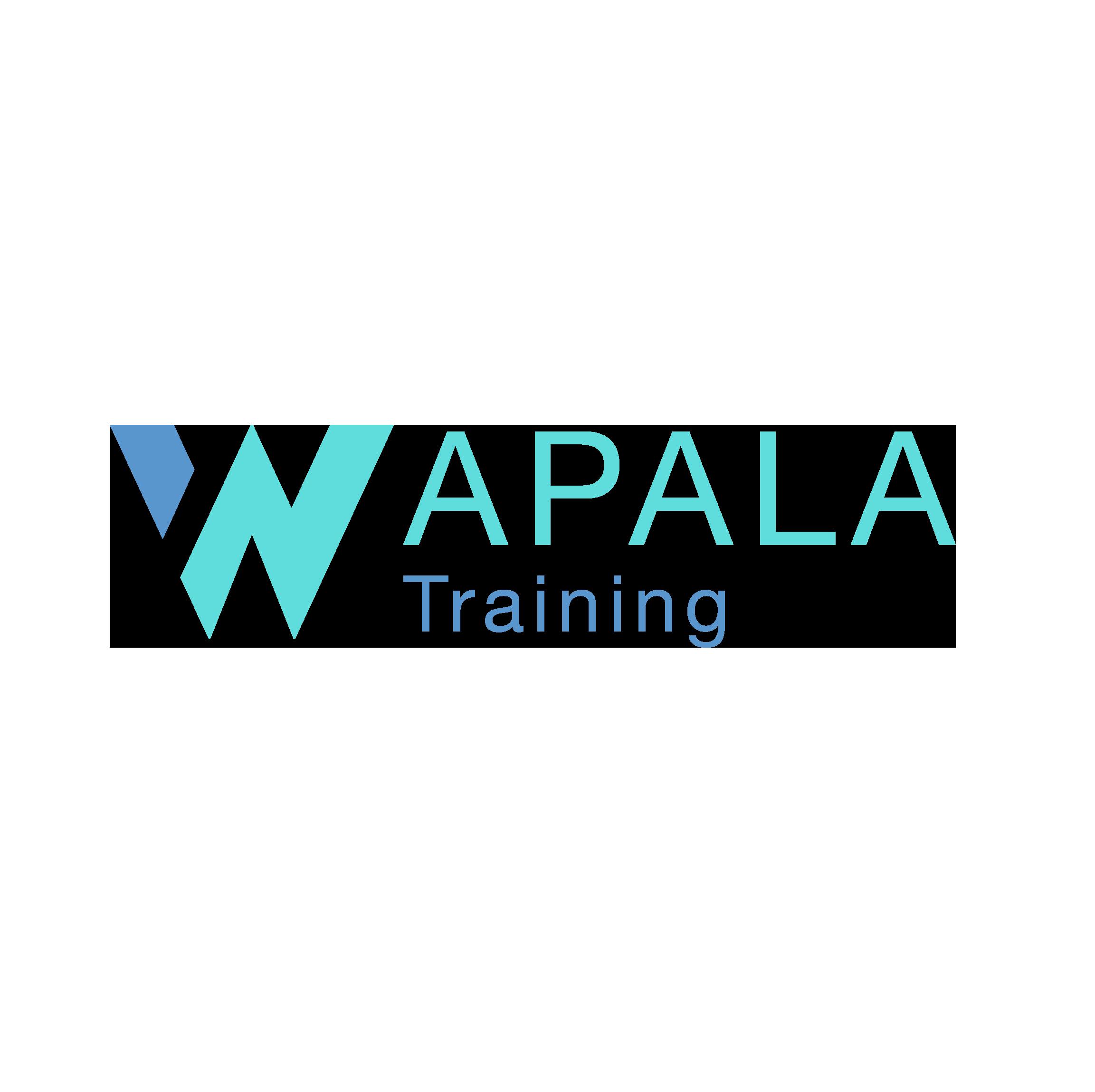 Wapala training : Des formations techniques permettant une compréhension parfaite