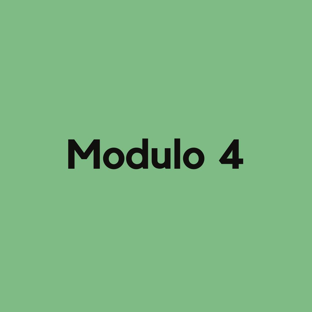 Modulo 4 corso influencer