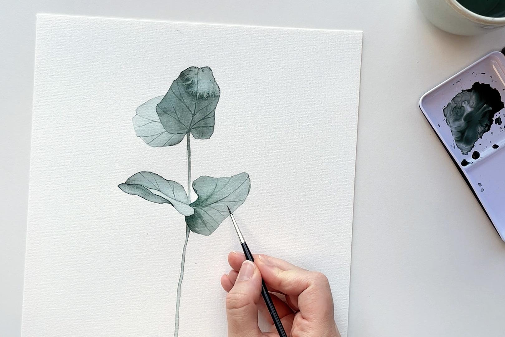 paint watercolor eucalyptus - Bloom Creatives art classes