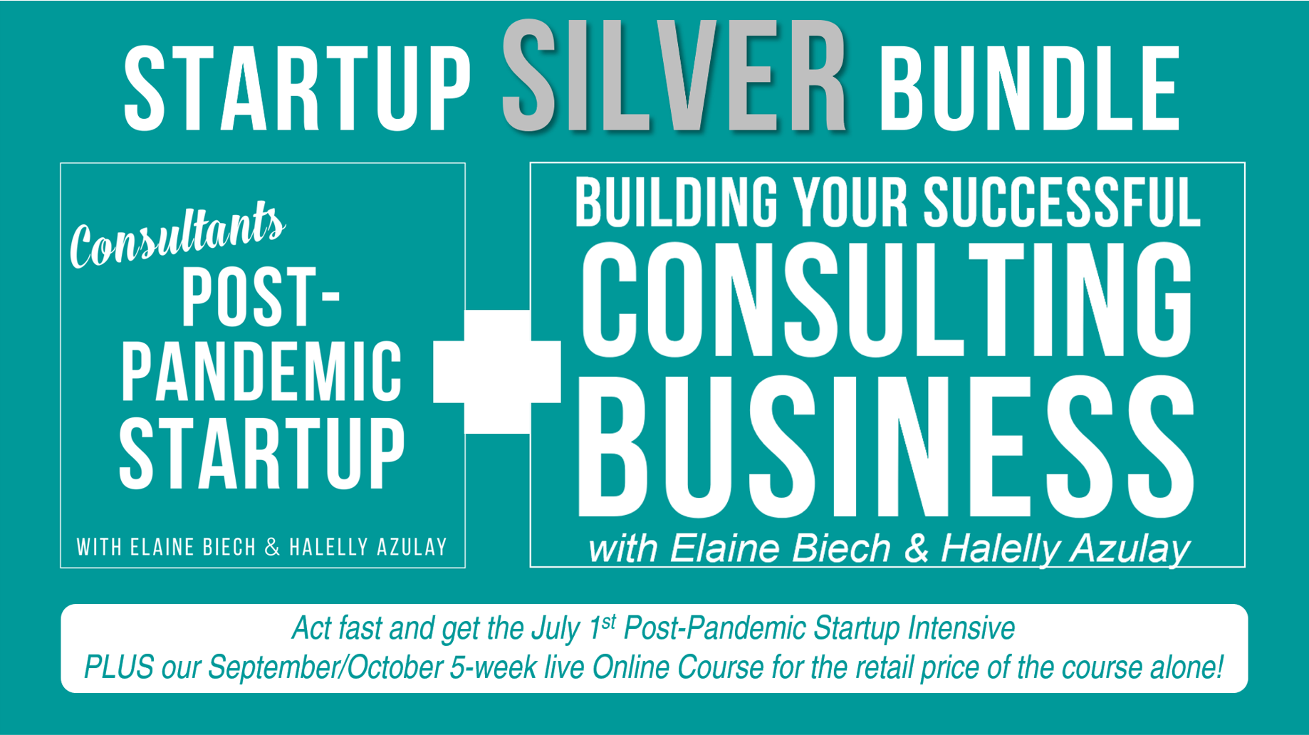 Get BOTH the Consultant Post-Pandemic Startup AND the 5-week Building Your Successful Consulting Business Live Online Course for the retail price of the course alone!