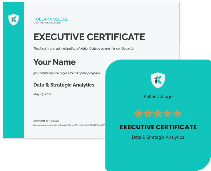 Data & Strategic Analytics Leader