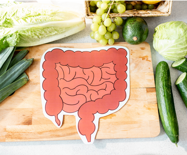 intestines on cutting board with healthy food