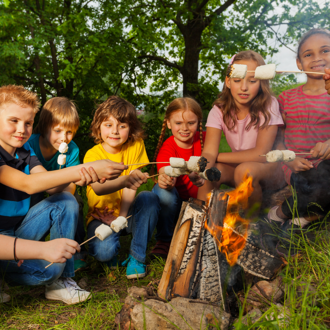 campfire with marshmallow toasting