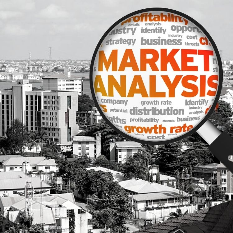 Market studies and insights