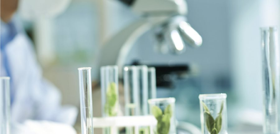 Science evidence natural health herbal medicine