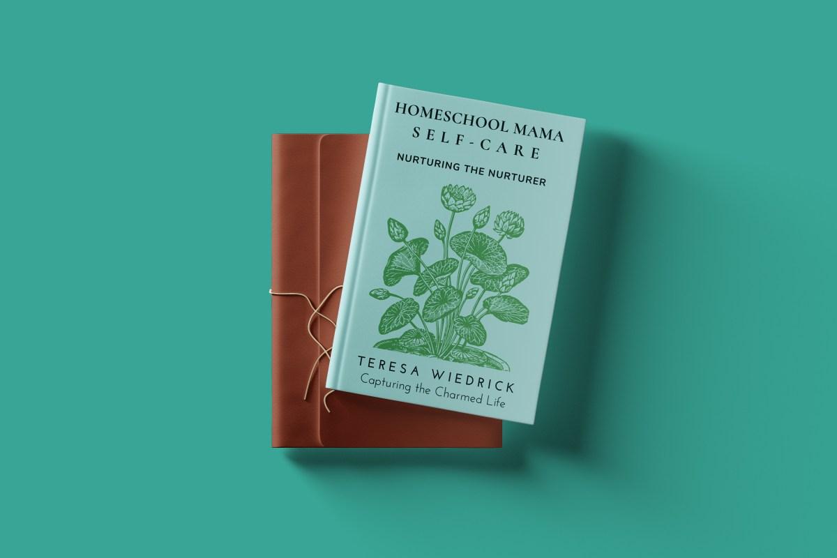 Homeschool Mama Self-Care book