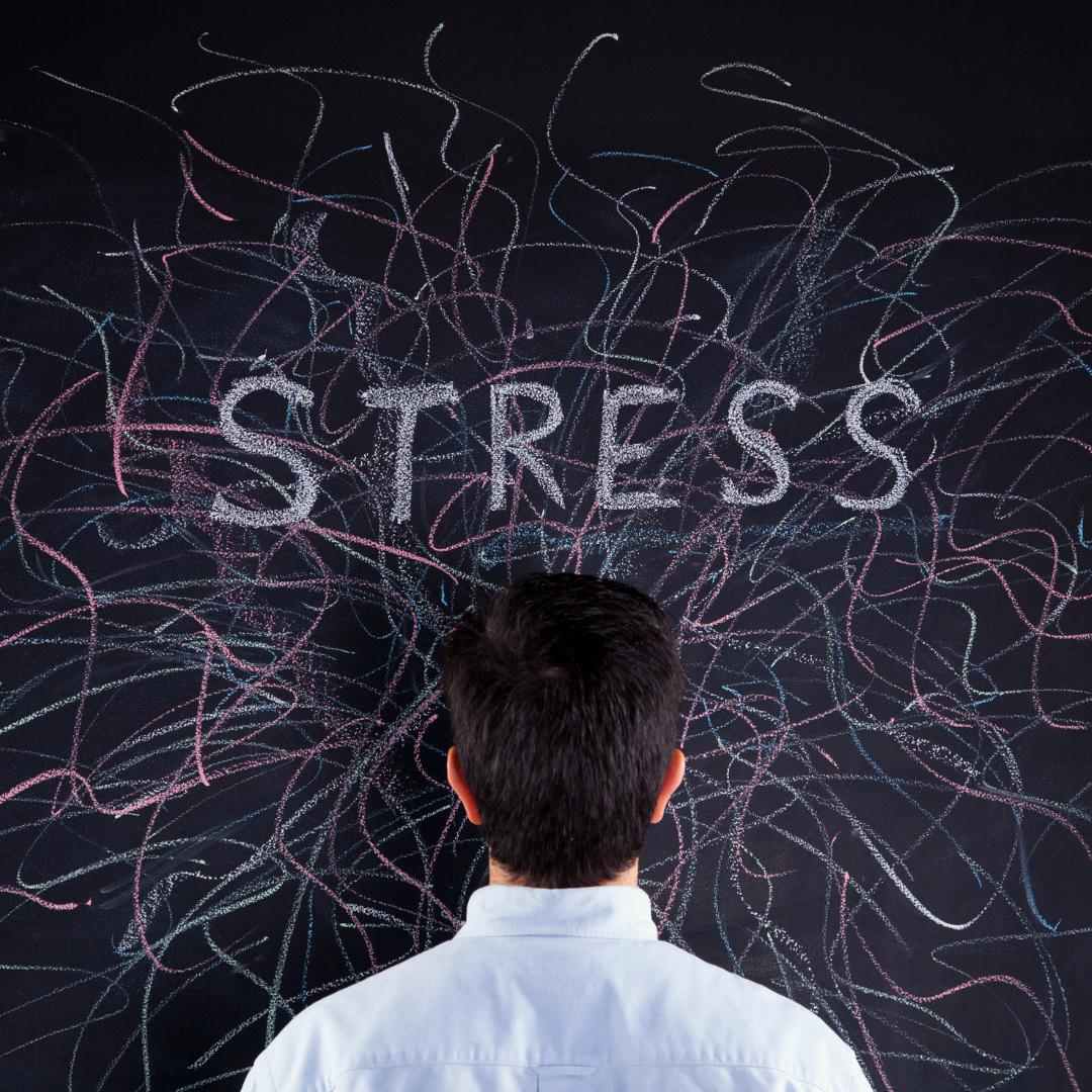 The Science of Stress with Dr. Cassie Wilder