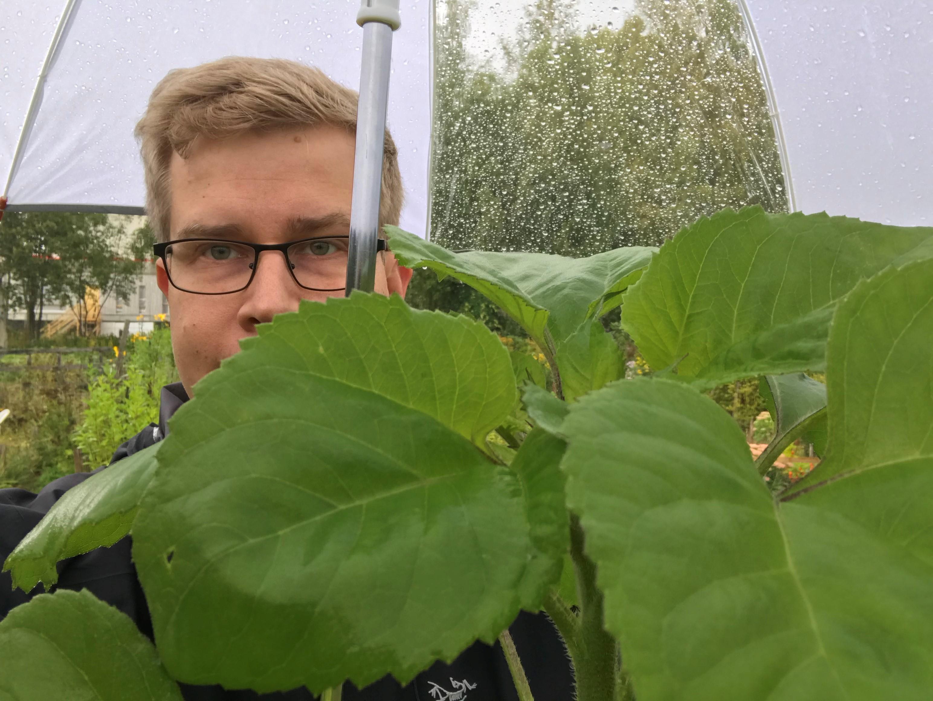 Man behind a plant