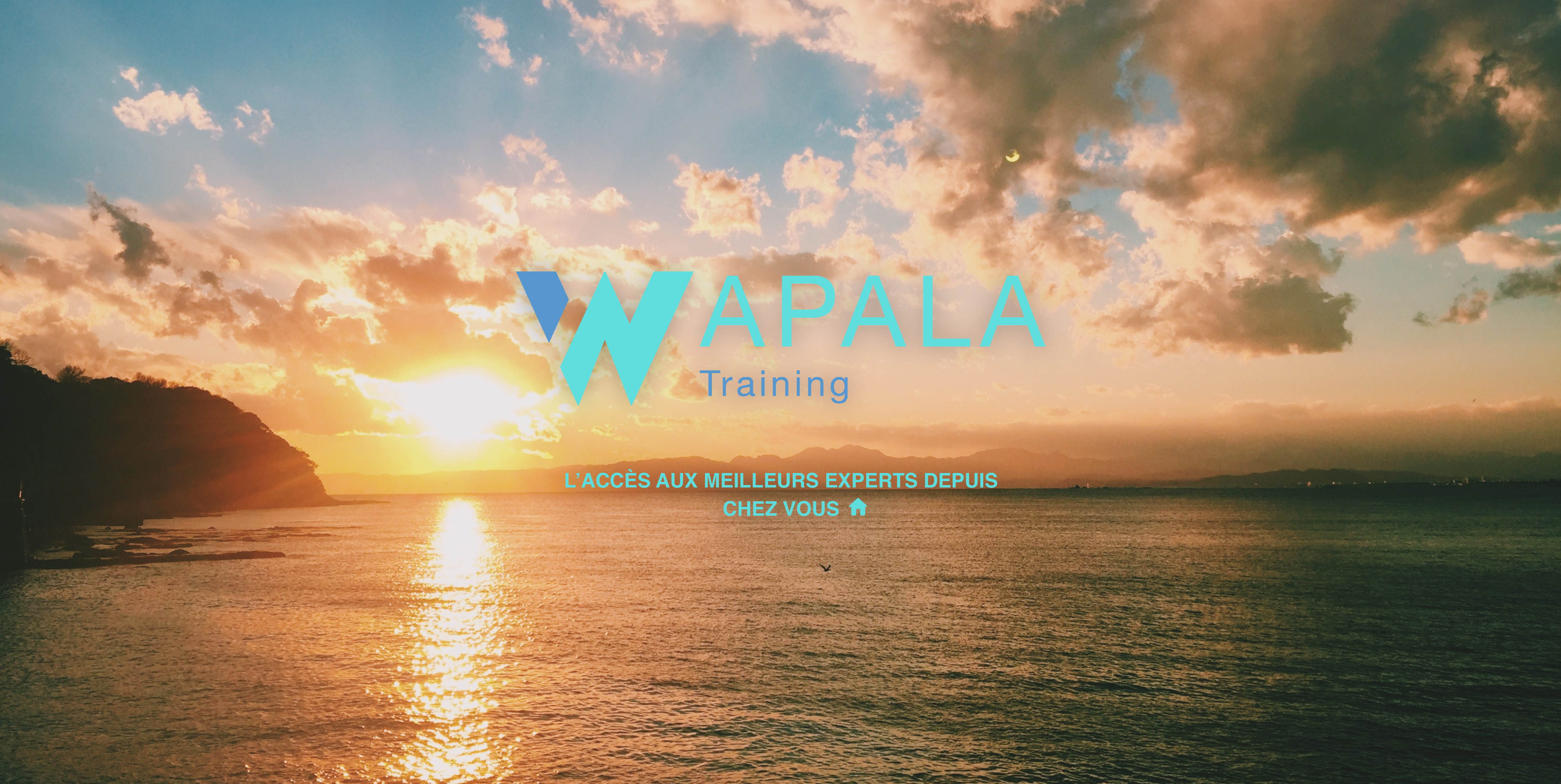 Wapala Training : L