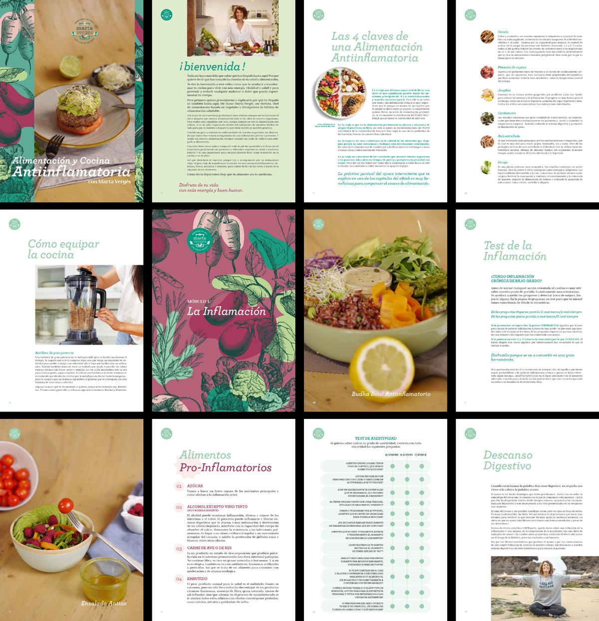 ebook dieta antiinflamatoria