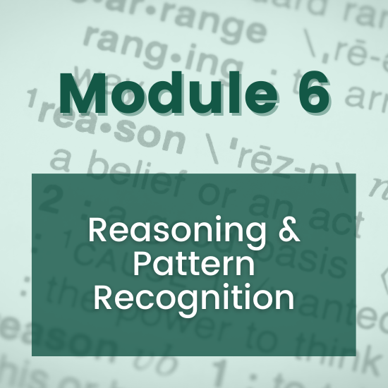 Section 6 - Reasoning & Pattern Recognition