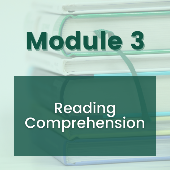 Section 3 - Reading Comprehension
