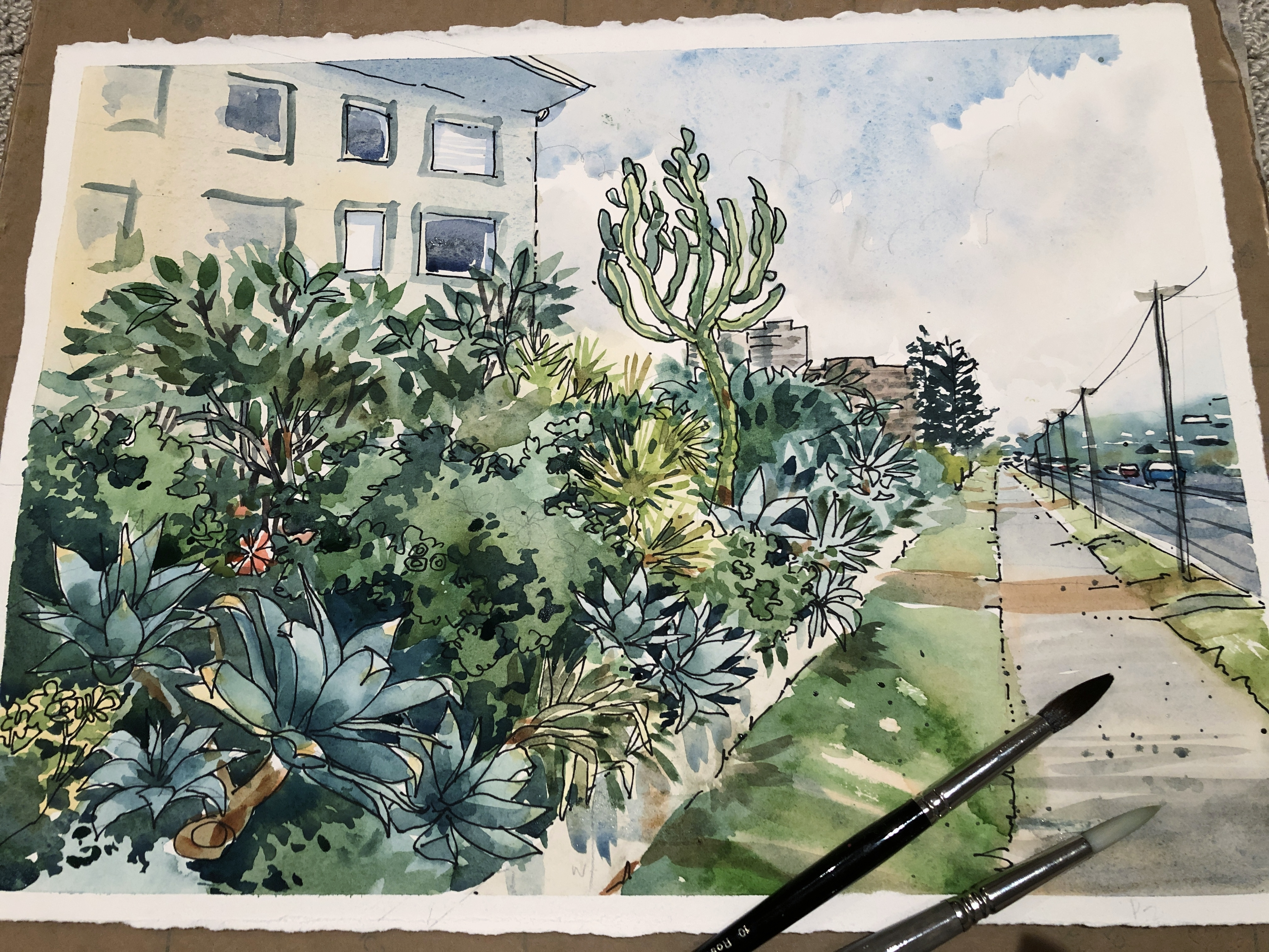 Collaroy Beach  Pen and Wash. Online Watercolor course and classes teaching absolute beginners how to paint in watercolour with Jenny Gilchrist and Northern Beaches Watercolour