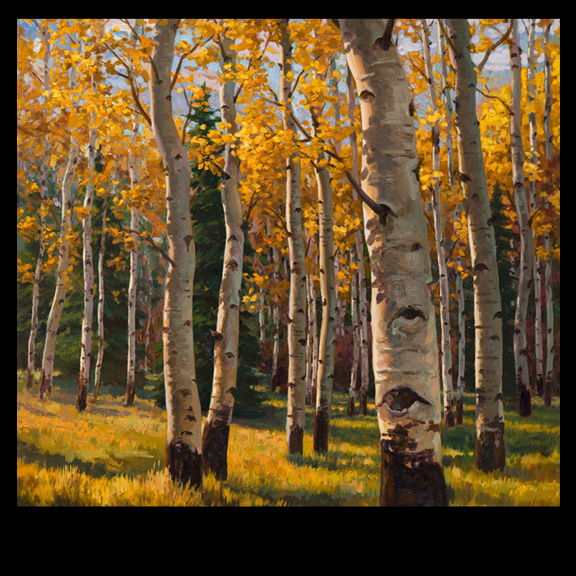 oil painting of aspen tress by artist Kevin McCain