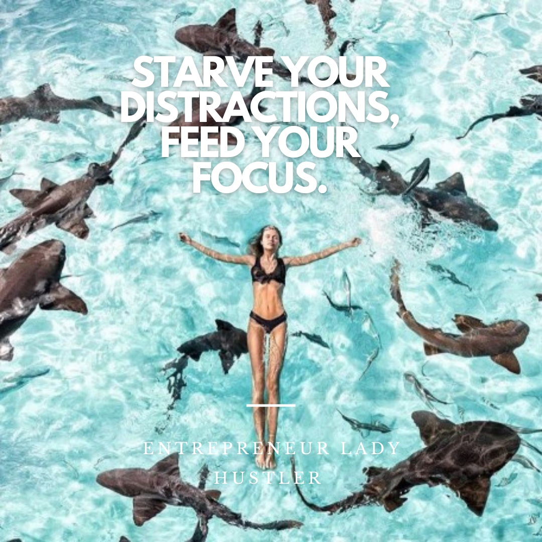 business coaching starve your distractions feed your focus