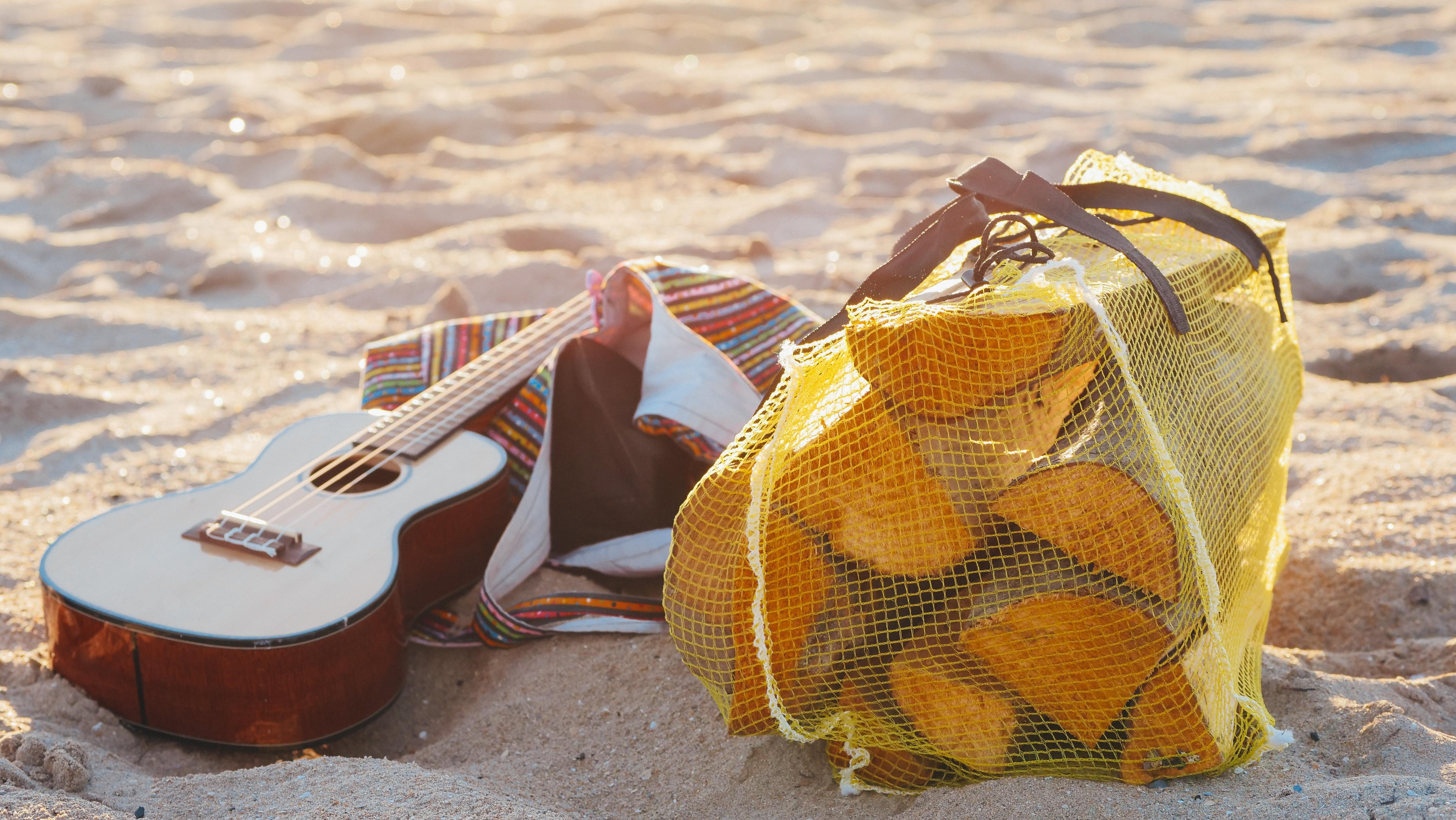 ukulele and bag of logs on sandy beach
