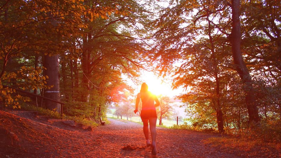 Runner in Sunlight