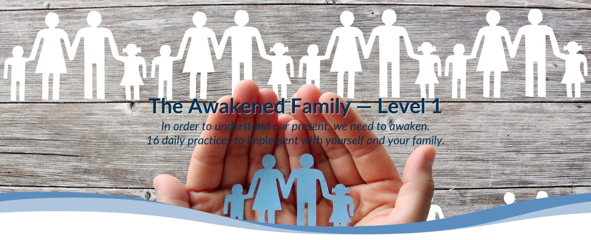 The Awakened Family Level 1