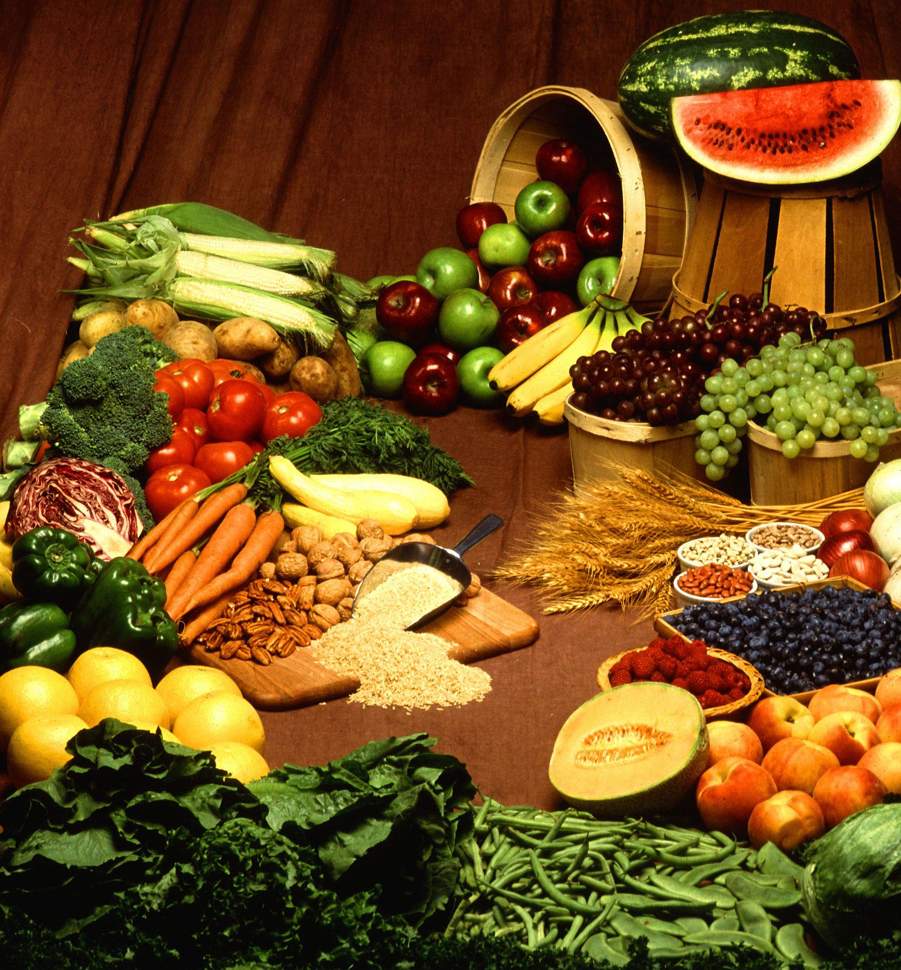 VSG diet