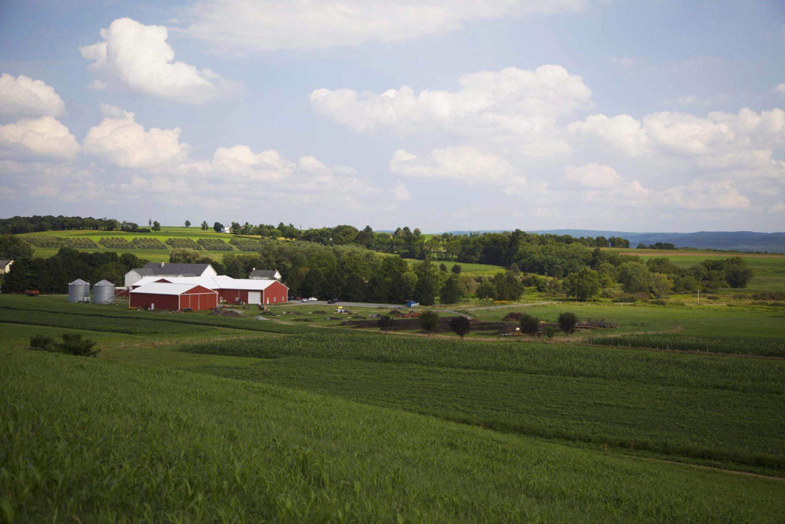 Rodale Institute Farm in Kutztown, Pennsylvania