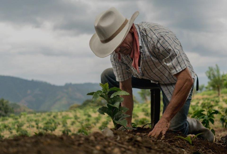 ¿Qué proyectos nos faltan en México para un desarrollo rural y una industria agroalimentaria sustentable?