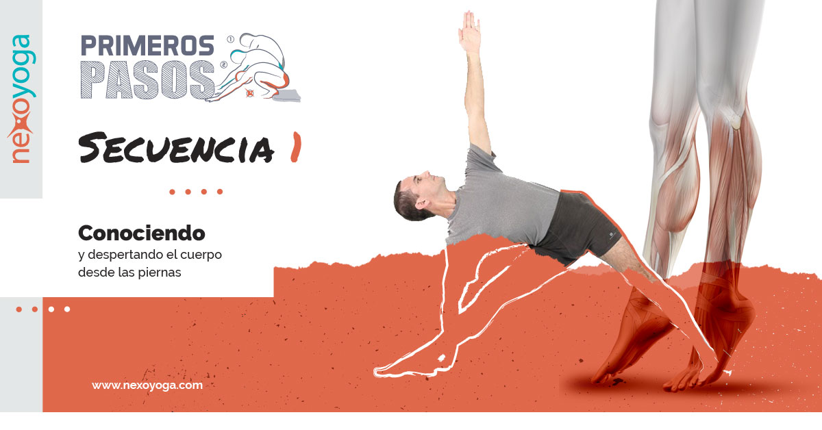 Programa de Iniciación al Yoga