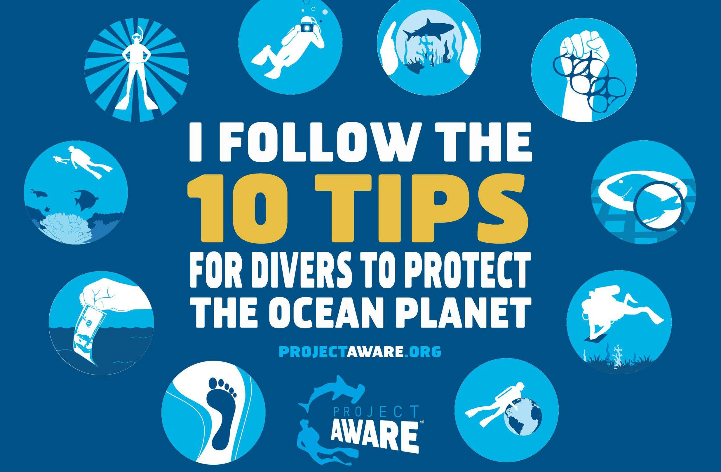 Project AWARE 10 Tips For Divers To Protect The Ocean Planet