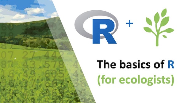 The basics of R (for ecologists) course title with the logo and landscape made of numbers shown to the left