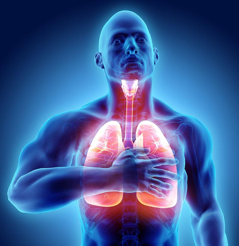 Pranayama & Our Lungs
