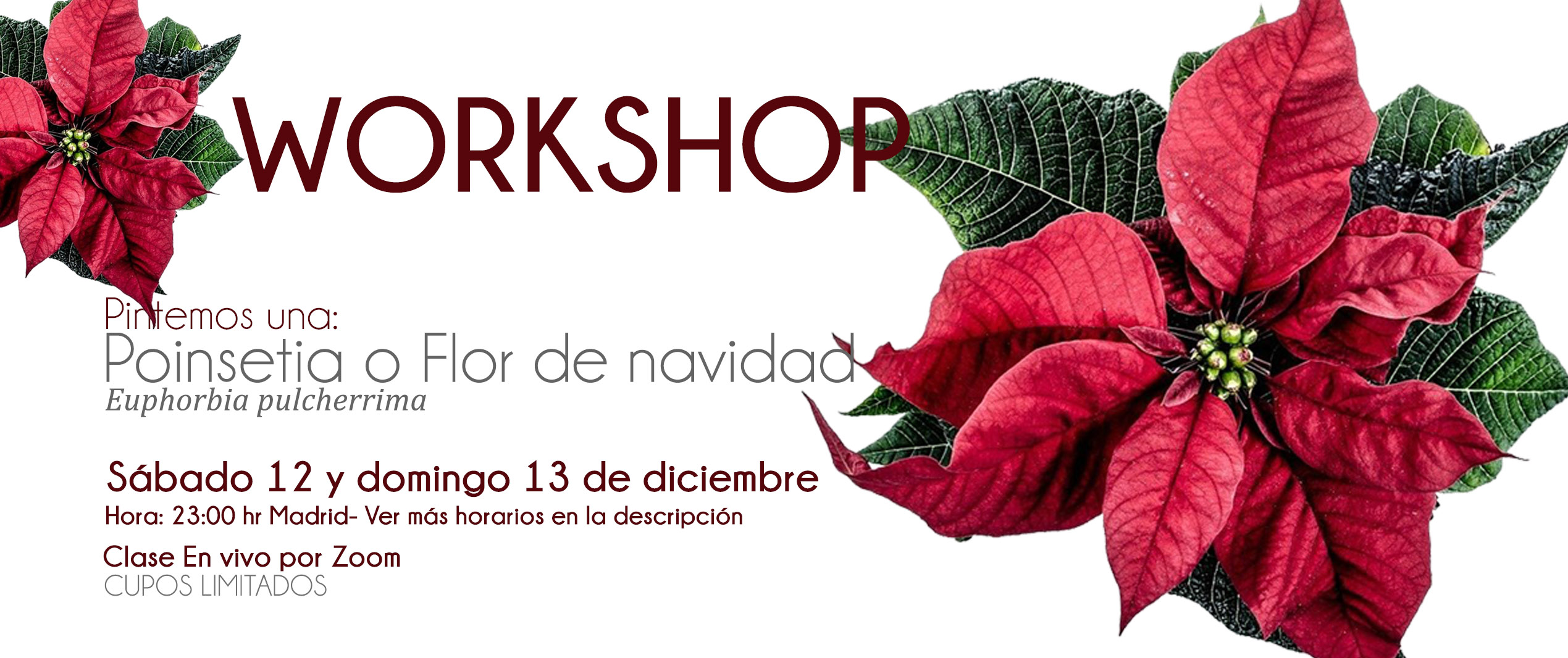 Workshop pintemos un Membrillo