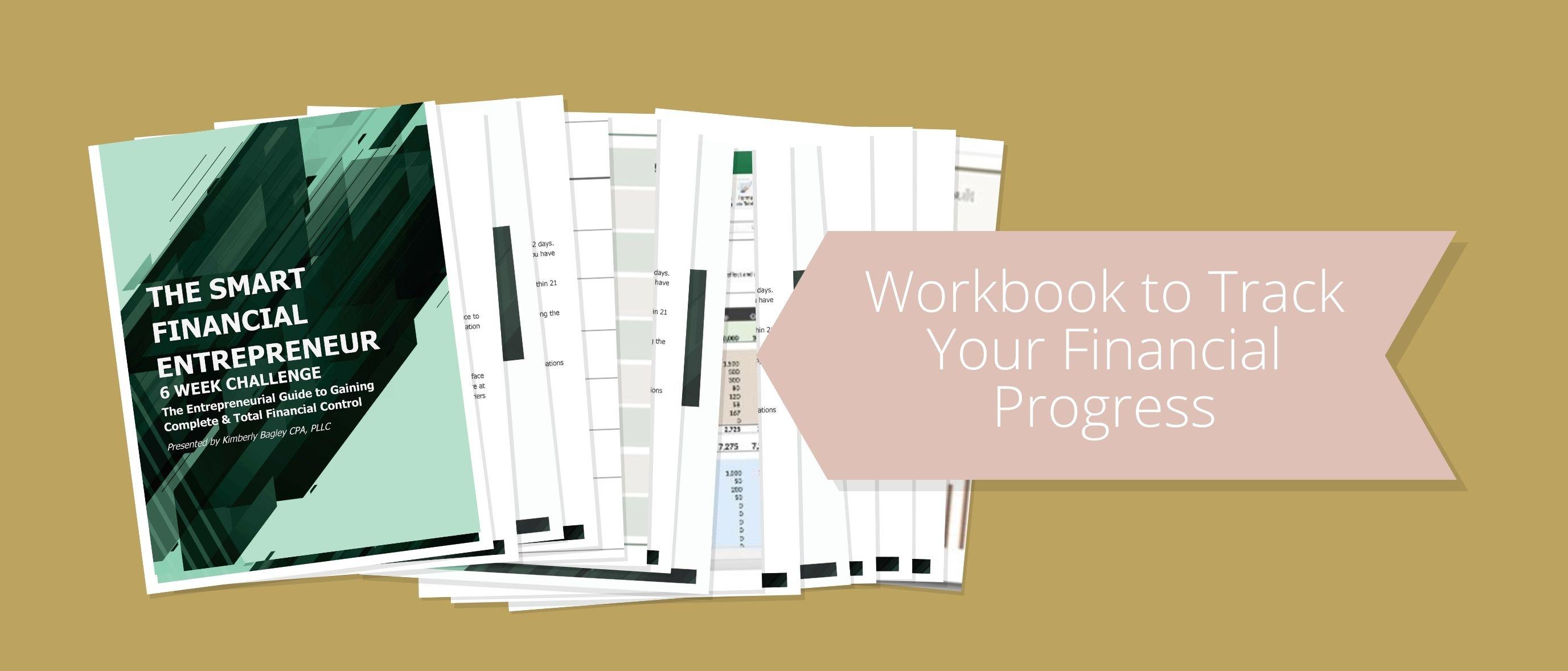Smart Financial Entrepreneur workbook