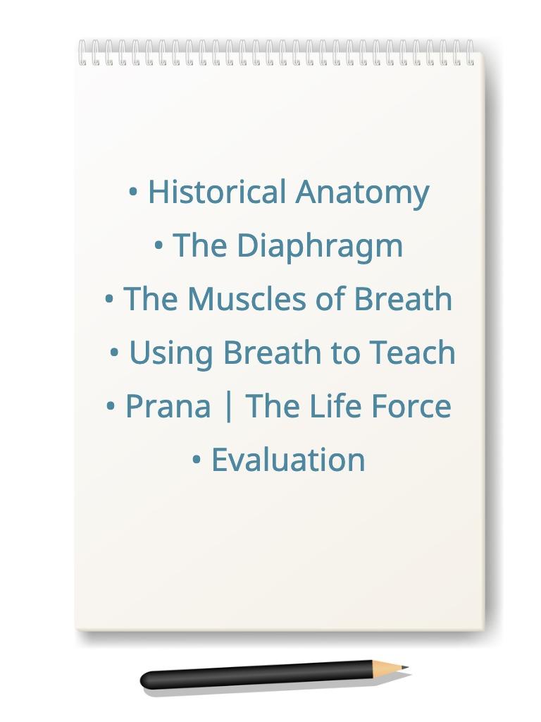 anatomy yoga breath