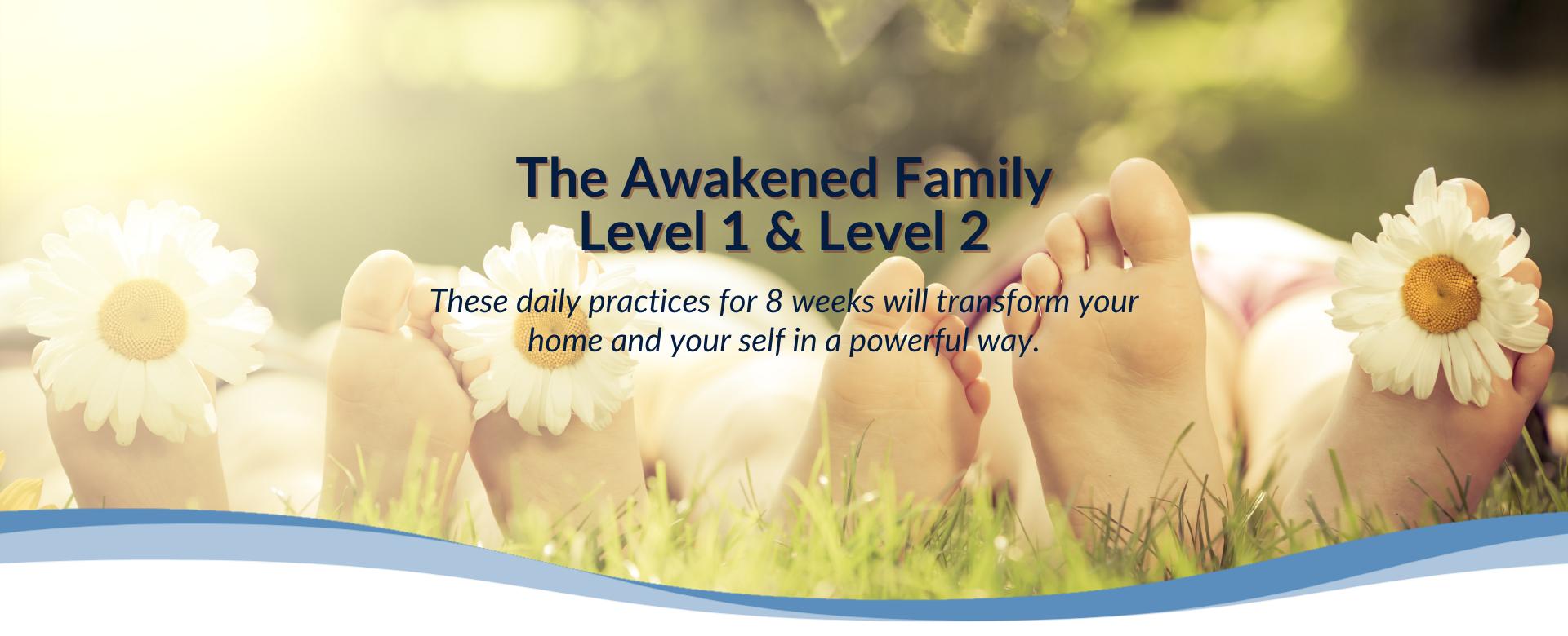 8 Weeks To An Awakened Family (Level 1 & 2)