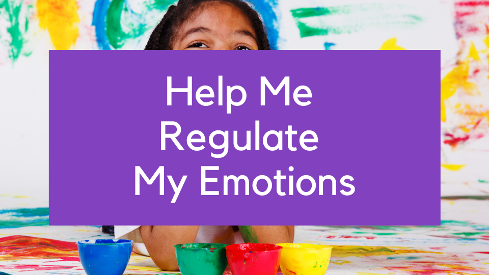 Online course Help me Regulate My Emotions training understanding behaviour
