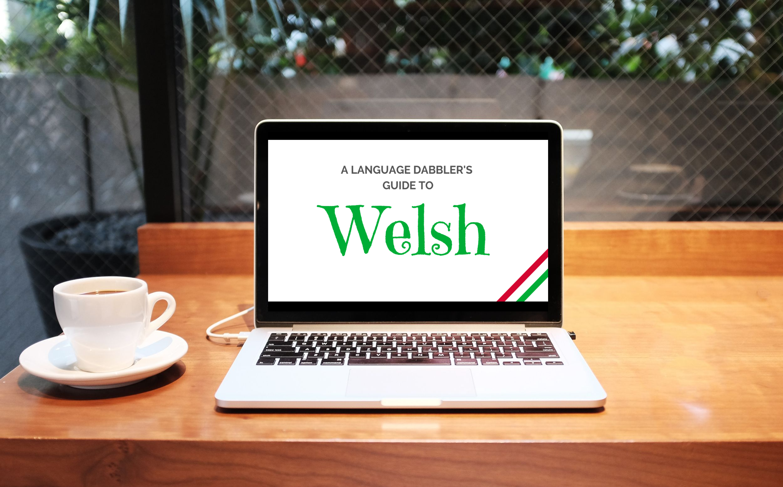 Language Dabbler's Guide to Welsh