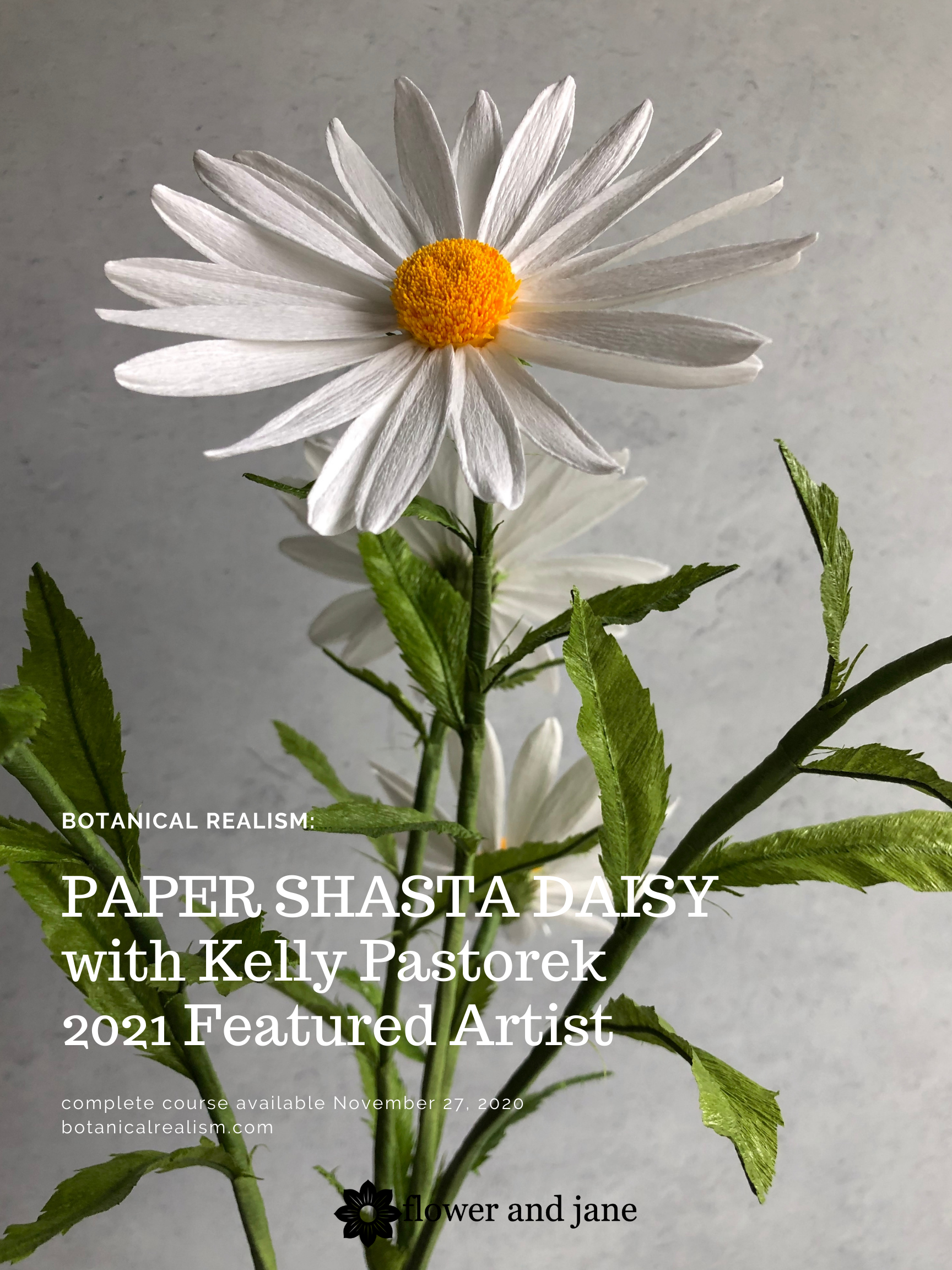 Paper Shasta Daisy Online Course Botanical Realism Certificate Program